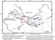 Origin and spread of wheat in China | Archaeobotany and Domestication | Scoop.it