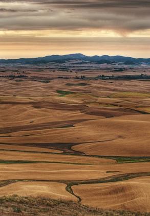 Five Reasons Landscape Photographers Love WashingtonState | Freelance Photographer | Scoop.it