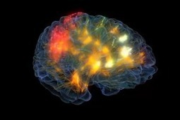 New High-Tech Lab Records the Brain and Body in Action | ucsf.edu | Social Neuroscience Advances | Scoop.it