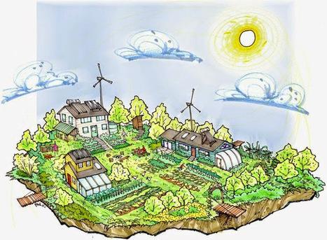Maximizing the Sustainability of Aquaponics | Aquaponics | Scoop.it
