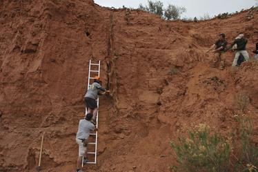 Utah ghost tree offers centuries-old 'climate archive'   Geology   Scoop.it