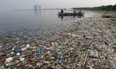 Human impact has pushed Earth into the Anthropocene, scientists say | HMHS History | Scoop.it