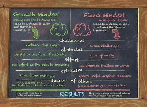 Growth Mindset: GoBrain and Making a Splash | Leader of Pedagogy | Scoop.it