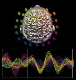 Neuroscientists Develop 5D Data Visualization Technique - Datanami | Public Relations & Social Media Insight | Scoop.it