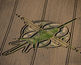 Physics Could Explain Mysterious Crop-Circle Art : Discovery News | Science and Nature | Scoop.it