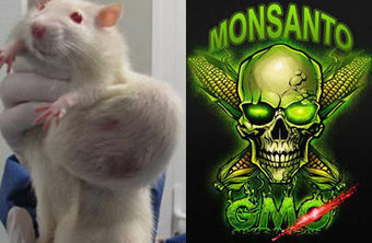 'PLS RT 'GLOBALLY EXPLODING' 'March Against Monsanto' 'ANTI Monsanto Day 052515' maker of #GMOs , roundup aka glyphosate , agent orange - name  hillary c & obama bff AS CO-DEFENDANTS IN LAWSUITS ' | News You Can Use - NO PINKSLIME | Scoop.it