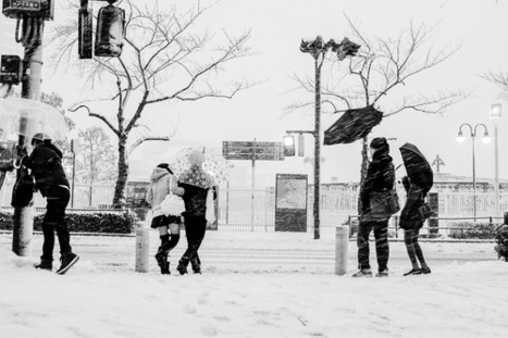 WHITEOUT BY BERT STEPHANI / KAGE collective | Small Camera Big Picture | Scoop.it