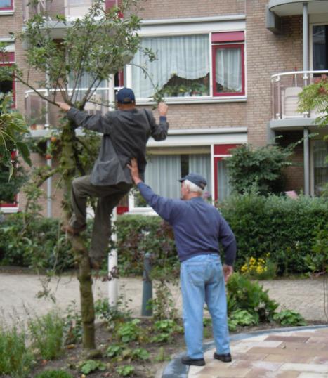 Eco Kinderpark - Lof der Zoetheid had een appeltje te schillen met De Steenplaat | Eetbare Stad | Scoop.it