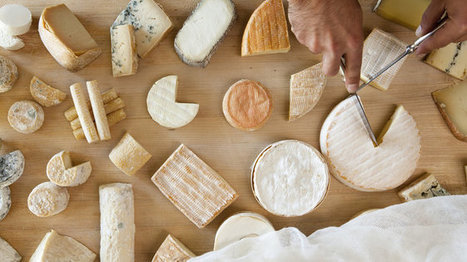 There's Now Proof That Eating Cheese Makes Wine Taste Better | International Lifestyle: People, Places and more.. | Scoop.it
