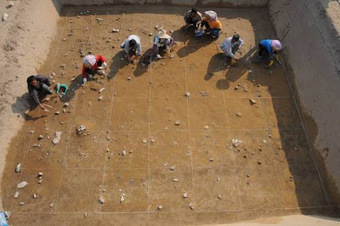 CHINE : New discovery of ancient diet shatters conventional ideas of how agriculture emerged | World Neolithic | Scoop.it