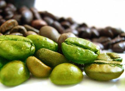 Dimagrire con il caffè verde, i segreti dei miracolosi del chicco verde - Tutta Salute | Green | Scoop.it