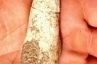 Stone Age Phallus Found in Israel | Aux origines | Scoop.it