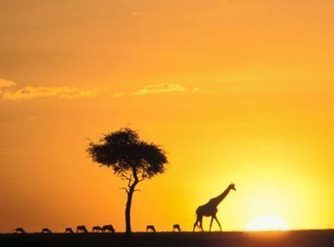 5 Things to Remember when Backpacking Through Africa. - MoonProject | Moon Project | Scoop.it