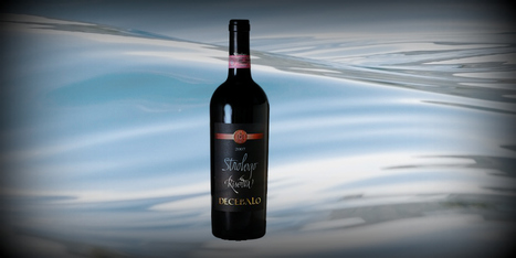 Rosso Conero D.O.C.G. Riserva, Decebalo, Cantina Silvano Strologo, Camerano, Marche | Wines and People | Scoop.it