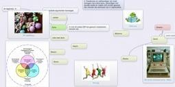 Creatief brainstormen online | Online Faciliteren en meer | Social media for learning | Scoop.it