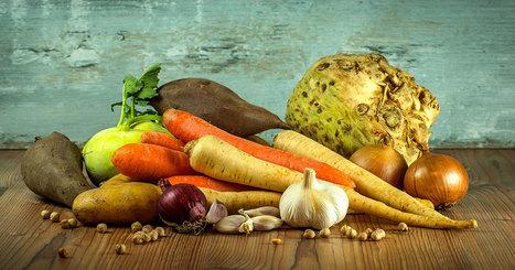 Les fruits et légumes produisent une électricité 8 fois moins chère que les méthodes traditionnelles | Energies Renouvelables | Scoop.it
