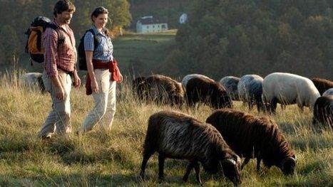 """Legambiente: crescono in Italia le vacanze """"green"""" - La Repubblica   www.vacanzaidea.eu   Scoop.it"""