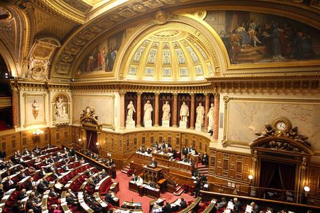 Sénat : Ce n'est pas une loi majeure pour la culture | L'observateur du patrimoine | Scoop.it