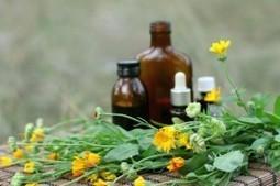 Il Naturopata e la Naturopatia | Naturopatia e benessere: consigli e rimedi per l'armonia di mente, anima e corpo | Scoop.it