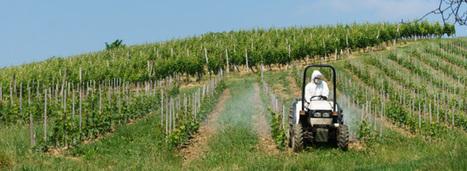 """Pesticides : une """"boîte à outils"""" donnée aux préfets pour protéger les personnes vulnérables   Comment va ma Planète ?   Scoop.it"""