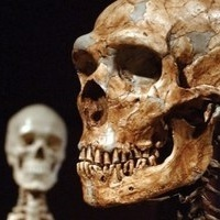 Confirmed: All non-African people are part Neanderthal | Evolution of Man | Scoop.it