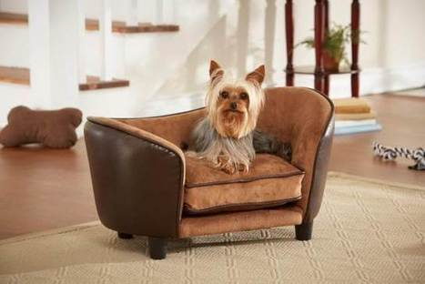 ENCHANTED HOME PET ULTRA PLUSH SNUGGLE BED PEBBLE BROWN – Enchanted Home Pet furniture eases your pet into a luxurious cushion that engulfs them in complete comfort and warmth. · Fits pets up to 10... | Dog Pictures - Pindoggy | Scoop.it
