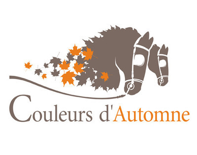 """Design: Lovely Logo for """"Couleurs d'Automne"""" World Championship of Pony Driving in France 