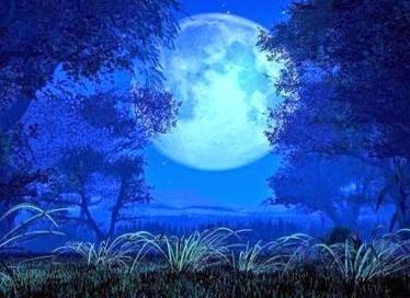 DESIERTOS QUE HABITÉ OASIS QUE ENTREVÍ: Si la luna se va sin una lágrima | Baldra Torres (Aire Literario) | Scoop.it