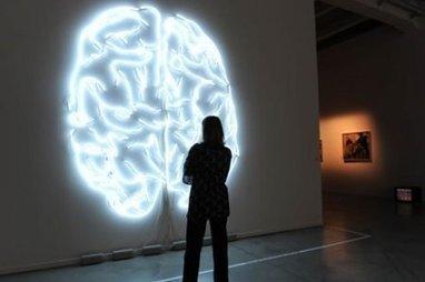 Comment l'intelligence est venue à l'homme | Seniors | Scoop.it