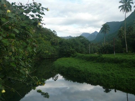 Projet de centrale hydroélectrique de la Vaiiha: les riverains favorables - CAP21 Antilles | CAP21 Le Mouvement | Scoop.it
