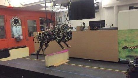 El MIT desarrolla un robot capaz de esquivar obstáculos | LabTIC - Tecnología y Educación | Scoop.it