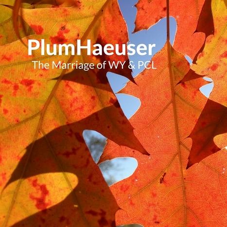 PlumHaeuser | Risk-Adjusted Returns | Scoop.it