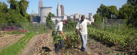 Cleveland Crops: Training People with Disabilities to Farm | Community Gardening Resources | Scoop.it