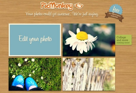 PicMonkey - online photo editor | Animal Webcams | Scoop.it