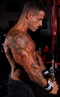 Who will be the next Face of Gripped for 2014 - Gripped Fitness Accessories | Gripped Fitness | Scoop.it
