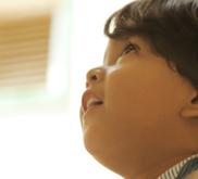Investigan la capacidad humana para relacionar la información visual y el lenguaje | Traducción, Idiomas y Comunicación | Scoop.it