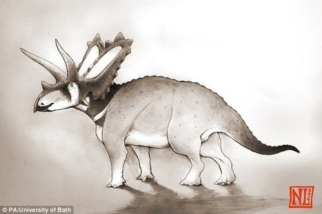 New species of dinosaur rediscovered lying forgotten in a museum   Geology   Scoop.it