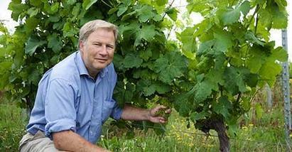 Pierre Rion, l'homme qui a créé le premier vignoble wallon | Le vin quotidien | Scoop.it