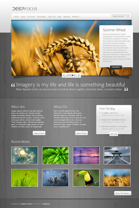 10+ Best WordPress Photography Themes To Showcase Your Works And Creativity   WordPress   Scoop.it