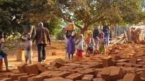 L'agriculture pour remédier à la plus faible croissance de l'Afrique sub-saharienne en 20 ans | Questions de développement ... | Scoop.it