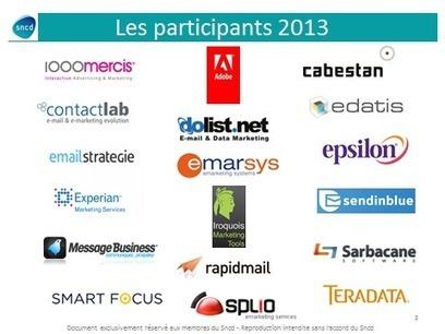 Le Sncd publie les chiffres de l'activité routage email 2013 en France | Sncd | Web Digest | Scoop.it