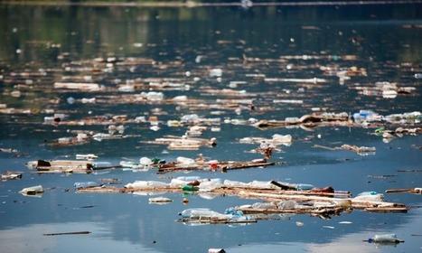 Aussie waters polluted - ScienceAlert | Environment | Scoop.it