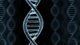 The Impact Of Genetics And Environment On Drug Abuse Risk - NewRelevant | New Addiction Information | Scientific Psychology: Neuroscience & Neuropsychology | Scoop.it