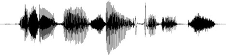 Field Recording : The German Market, Manchester | A World of Sound | Scoop.it