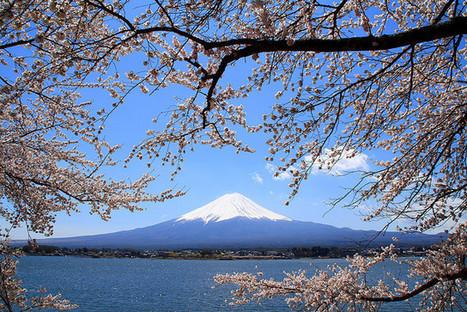 Nuevo plan japonés para fomentar el turismo   Turismo en japon   Scoop.it