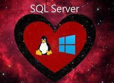 Microsoft's SQL Server Next for Linux, Windows hit public preview   ZDNet   Microsoft: News,Books,Tips,Downloads   Scoop.it