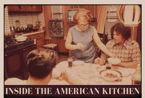 Visualistan: Inside The American Kitchen [Infographic] | Latest Infographics | Scoop.it