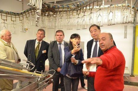 Agroalimentaire. La Chine prospecte en Bretagne | Questions de développement ... | Scoop.it