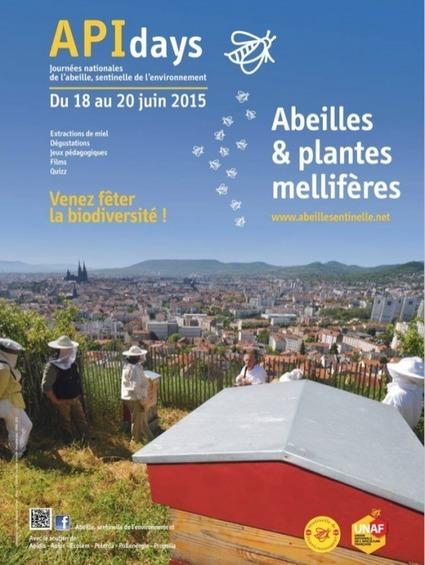CDURABLE.info l'essentiel du développement durable : : Du 18 au 20 juin 2015 autour d'apiculteurs passionnés : les APIdays, les 10ème Journées Nationales du programme Abeille sentinelle de l'enviro... | CDURABLE.info | Scoop.it