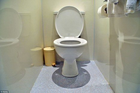 A math-based argument for always leaving the toilet seat down | Kickin' Kickers | Scoop.it